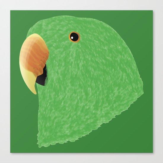 Eclectus [Male] Parrot Canvas Print