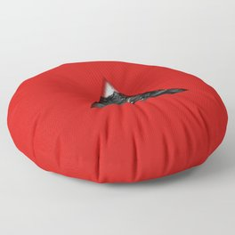 Red Mountain Floor Pillow