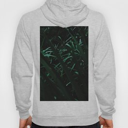 Grass blades basking in the sun - Abstract Hoody