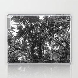 Looking Up the Sausage Tree Laptop & iPad Skin