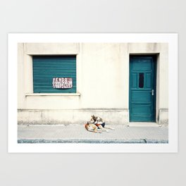Street dog in Uruguay Art Print