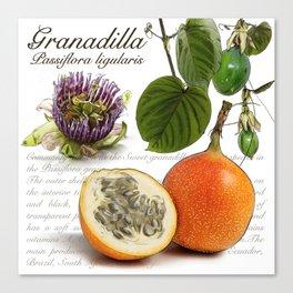 Granadilla Canvas Print