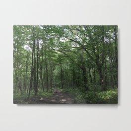 Peaked Mountain Trail Metal Print