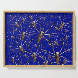 Watercolor Graphic Spider Crawl, Golden Orb Weaver Lapis Serving Tray