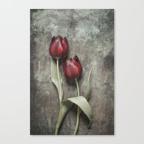 Red Tulips II Canvas Print