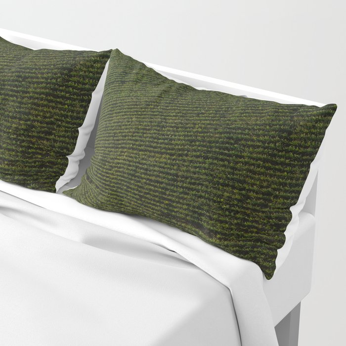 Rural Corn Fields Pillow Sham