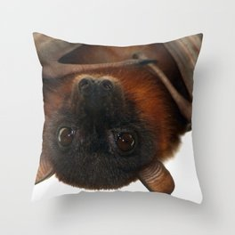 Little Red Flying Fox Hanging Out Throw Pillow