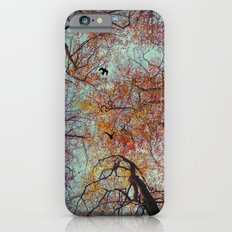 Trees In Fall iPhone 6s Slim Case
