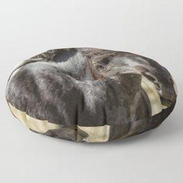 Wild Beauty Floor Pillow