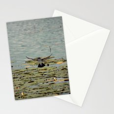 Flying Bird Hovering over Water Color Nature Photography Stationery Cards