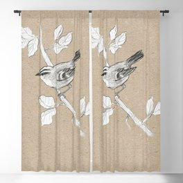 Goldcrest graphite drawing Blackout Curtain