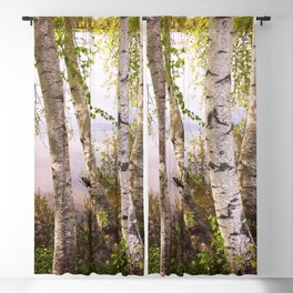 Birch by the Lake Blackout Curtain
