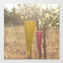 Pink Lemonade Parasol, Umbrella, Nature, Bokeh  Canvas Print