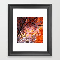 autumn tree VI Framed Art Print