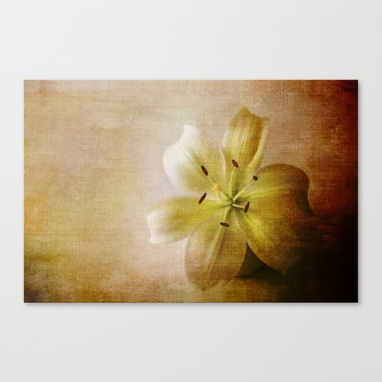 Textured Lily Canvas Print