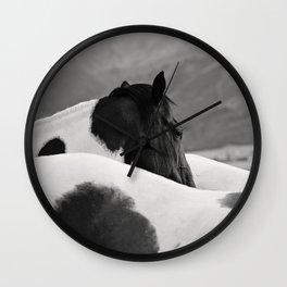 Pinto Horse Photograph Wall Clock