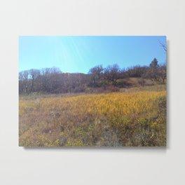 Sun Beam Hills Metal Print