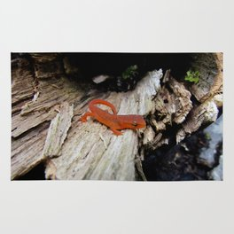 Red Newt Rug