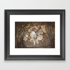 Amateur Geologist Framed Art Print