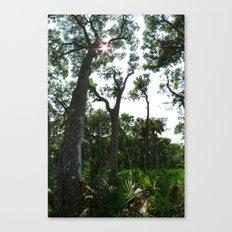 Vertical Panorama  Canvas Print