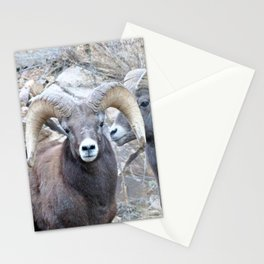 Watercolor Bighorn Ram 34 Stationery Cards