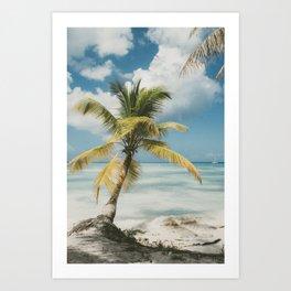 Palm Trees Punta Cana Art Print