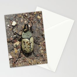 Rhino Beetle Stationery Cards