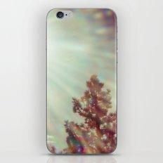 The Glaring Sun iPhone & iPod Skin