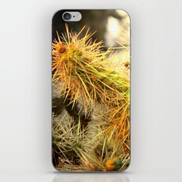 Nice Spines iPhone Skin