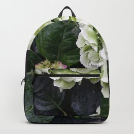 Black Butterfy Backpack
