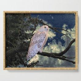 Snowy Owl Bird Stormy Sky A127 Serving Tray