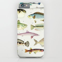 Illustrated Colorful Southern Pacific Ocean Exotic Game Fish Identification Chart No. 3 iPhone Case
