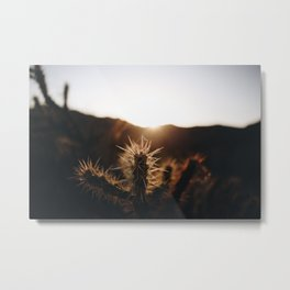 Beverly Canyon Metal Print