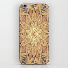Native Sun Ochre iPhone & iPod Skin