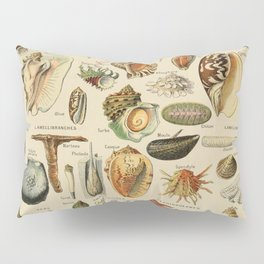 Vintage sealife and seashell illustration Pillow Sham