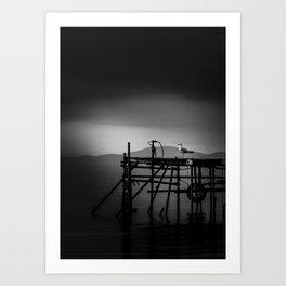 A Seagull sitting on a Quay Art Print
