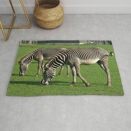 Double Zebra Rug