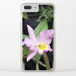 Cattleya Horace Maxima Orchid Clear iPhone Case