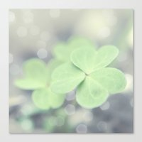 clover Canvas Prints featuring Clover by Scarlet