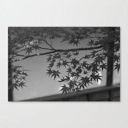 Chuson-ji, Japan. Canvas Print