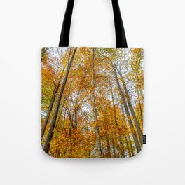 Reach High and Touch the Sky Tote Bag