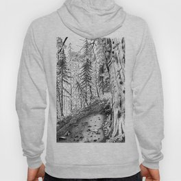 On the Trail Hoody