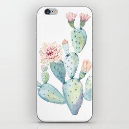 Pastel watercolor prickly pear cactus iPhone Skin