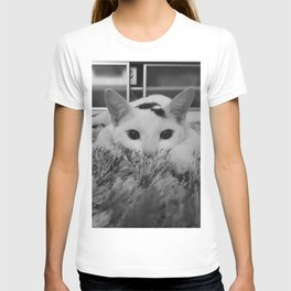 kitty ready to pounce T-shirt