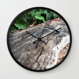 Co-Creating with Dragonfly Wall Clock