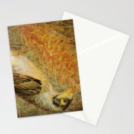 Australian Noisy Miner Stationery Cards