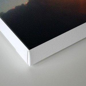 Soar. Canvas Print