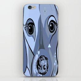 Dachshund in Blue iPhone Skin