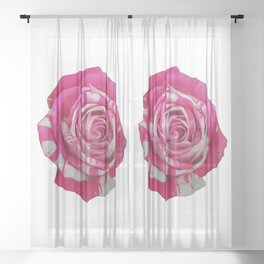 Pink and White Rose Sheer Curtain