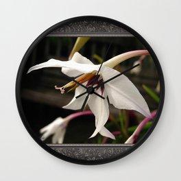 Peacock Gladiolus Wall Clock